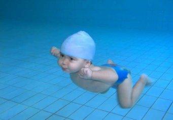 программа по плаванию для похудения