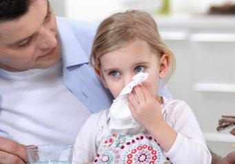 аллергия у йорка чем лечить